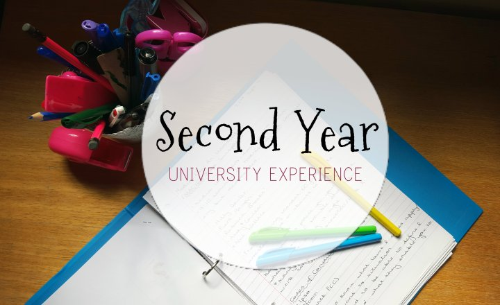 Calling All Freshers: Second YearExperience